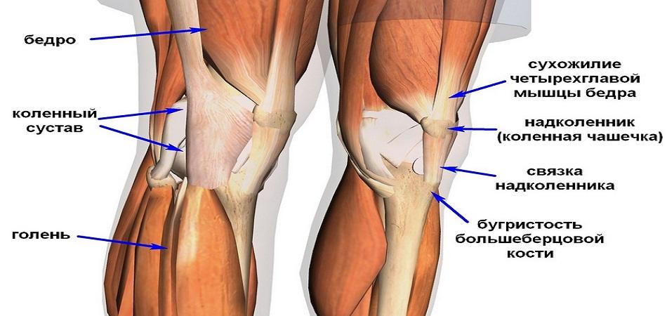 Воспаление связок коленного сустава лечение